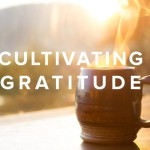 Cultivating Gratitude – an Introduction