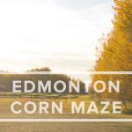 Ella's Trip to the Edmonton Corn Maze